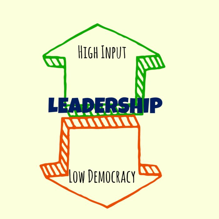 High Input, Low Democracy Leadership